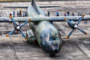50+41 - Germany - Air Force Transall C-160D aircraft