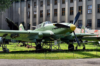 21 - Poland - Air Force Ilyushin Il-2 Sturmovik