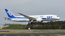 JA804A - ANA - All Nippon Airways Boeing 787-8 Dreamliner aircraft