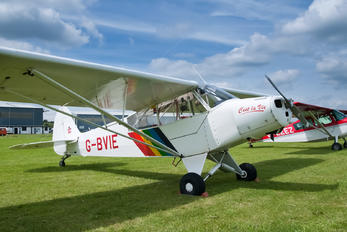 G-BVIE - Private Piper PA-18 Super Cub