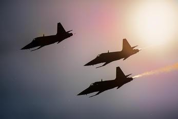 - - Switzerland - Air Force:  Patrouille de Suisse Northrop F-5E Tiger II