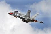 HN-411 - Finland - Air Force McDonnell Douglas F-18C Hornet aircraft