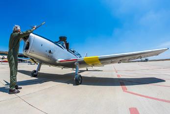 EC-BOI - Private de Havilland Canada DHC-1 Chipmunk
