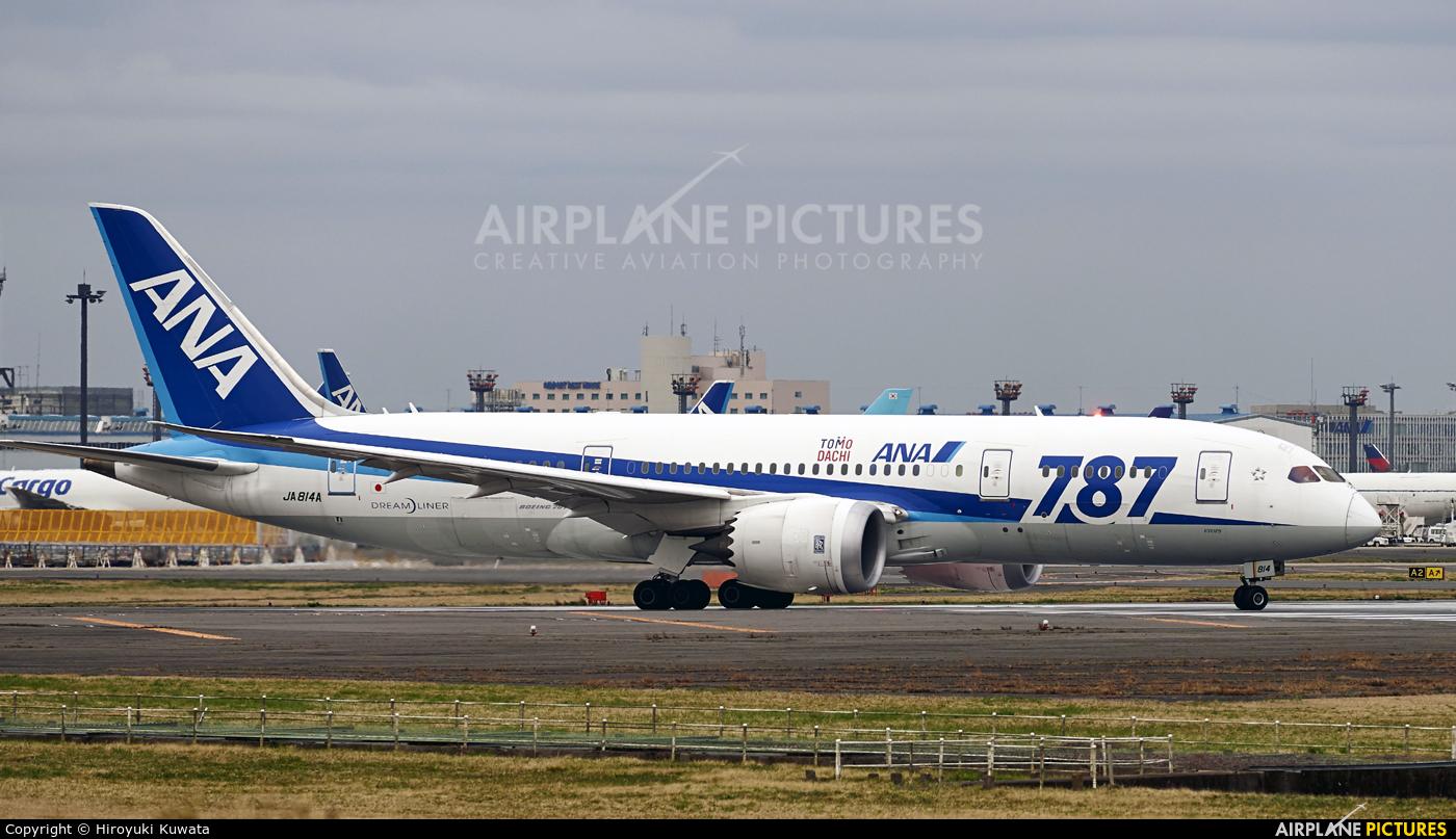 ANA - All Nippon Airways JA814A aircraft at Tokyo - Narita Intl