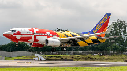 N214WN - Southwest Airlines Boeing 737-700