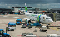 PH-HSB - Transavia Boeing 737-800 aircraft