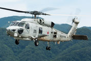 8425 - Japan - Maritime Self-Defense Force Mitsubishi SH-60K aircraft