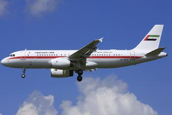 A6-DLM - United Arab Emirates - Government Airbus A320