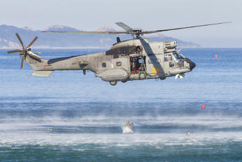 HD.21-2 - Spain - Air Force Aerospatiale AS332 Super Puma