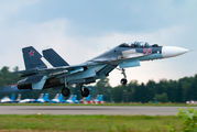 RF-93666 - Russia - Air Force Sukhoi Su-30SM aircraft