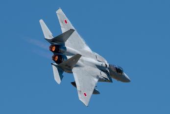 RJCO - Japan - Air Self Defence Force Mitsubishi F-15J