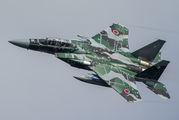32-8083 - Japan - Air Self Defence Force Mitsubishi F-15DJ aircraft