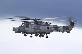 "ZZ519 - Royal Navy ""Black Cats"" Westland Wildcat HMA.2"