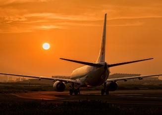 JA335J - JAL - Japan Airlines Boeing 737-800