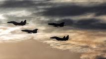 - - Poland - Air Force Mikoyan-Gurevich MiG-29UB aircraft