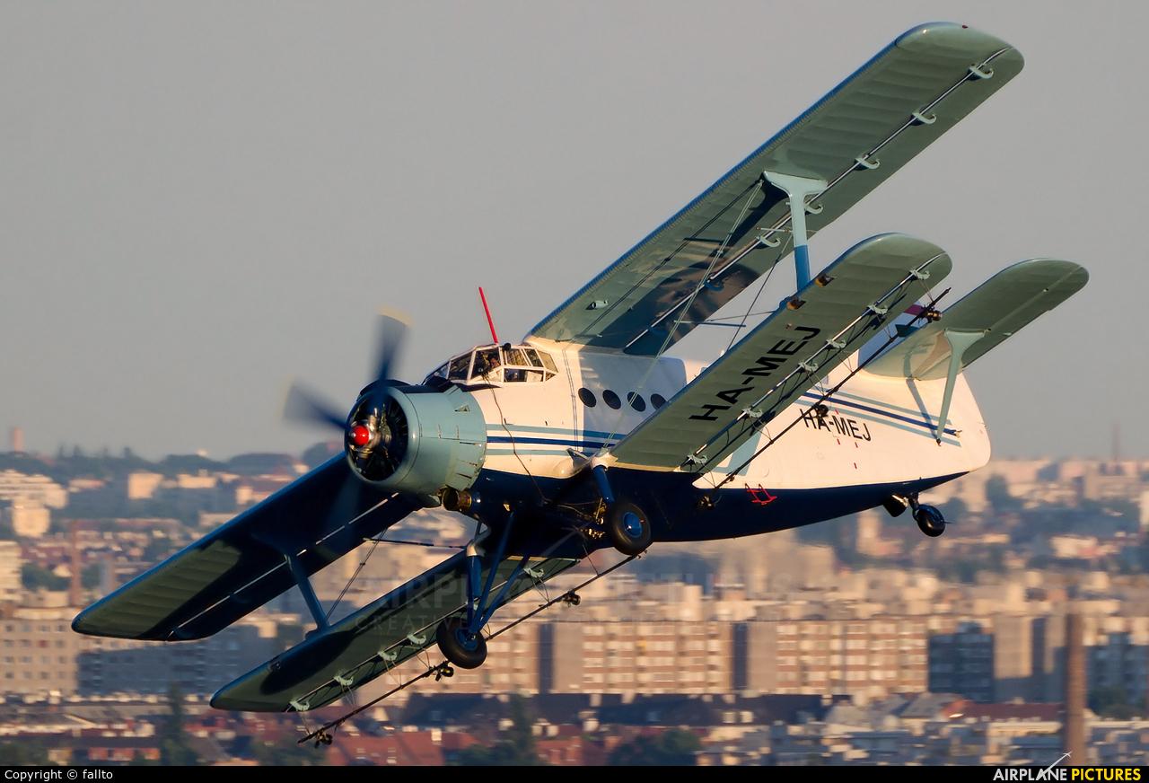 Private HA-MEJ aircraft at Off Airport - Hungary