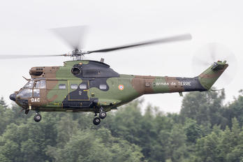 1036 - France - Army Aerospatiale AS332 Super Puma