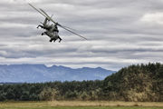 731 - Poland - Army Mil Mi-24V aircraft