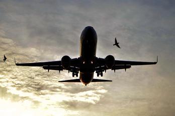 LV-FYK - Aerolineas Argentinas Boeing 737-800