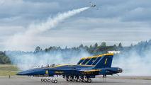 163485 - USA - Navy : Blue Angels McDonnell Douglas F/A-18C Hornet aircraft