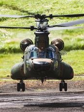 JG-2983 - Japan - Ground Self Defense Force Kawasaki CH-47J Chinook
