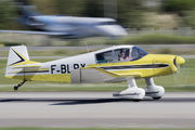 F-BLRY - Private Jodel DR1051(mod) aircraft