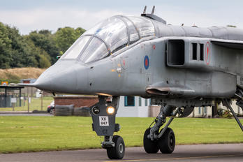 - - Royal Air Force Sepecat Jaguar T.2