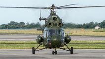 6429 - Poland - Army Mil Mi-2 aircraft