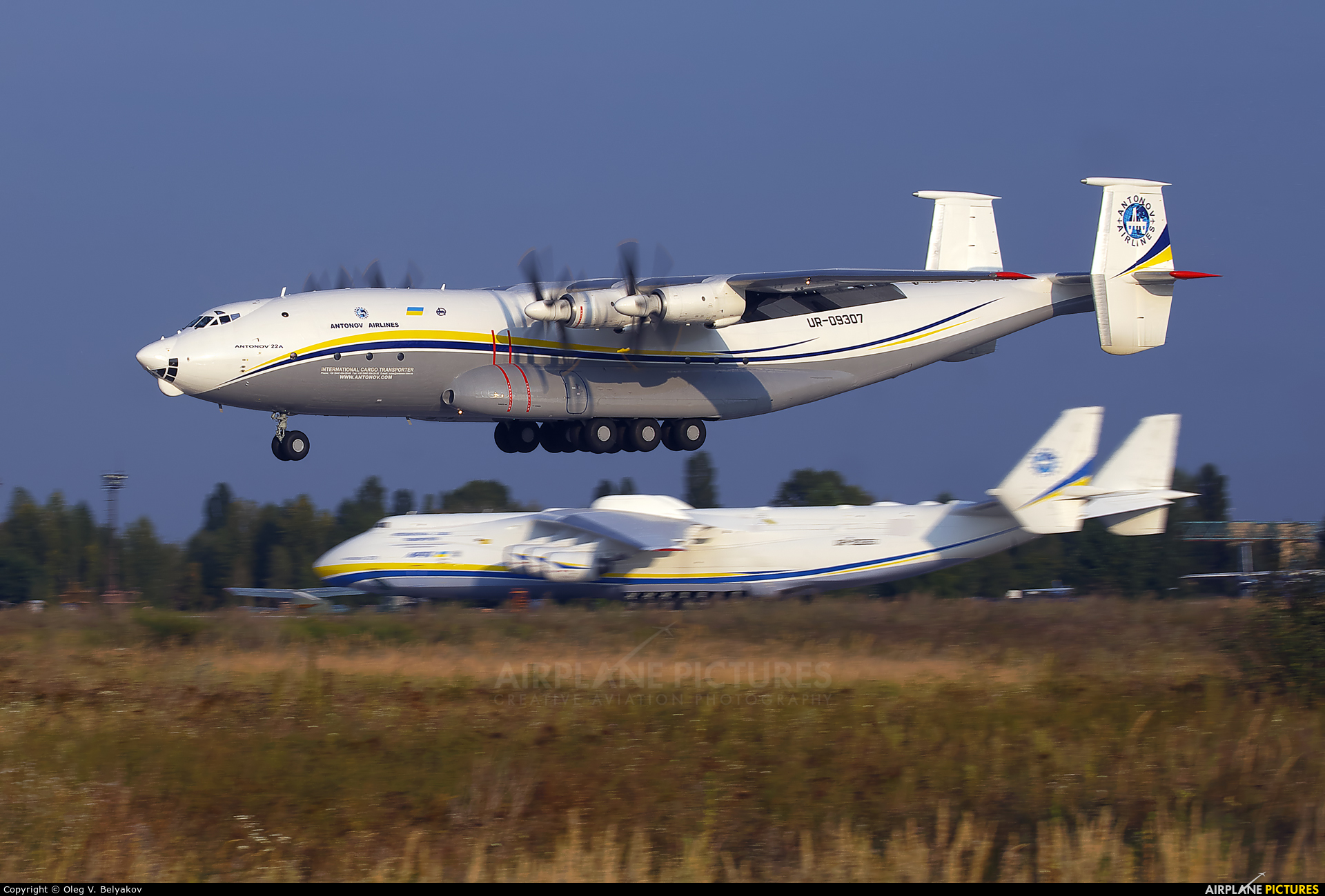 Antonov Airlines /  Design Bureau UR-09307 aircraft at Kiev - Gostomel