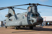 D-890 - Netherlands - Air Force Boeing CH-47F Chinook aircraft