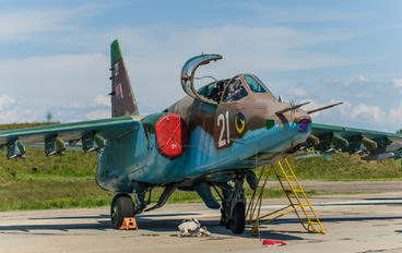 UMMA - Belarus - Air Force Sukhoi Su-25