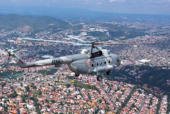 1704 - Mexico - Air Force Mil Mi-17-1V