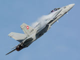 J-5010 - Switzerland - Air Force McDonnell Douglas F/A-18C Hornet aircraft