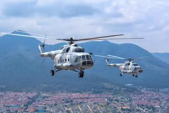 1722 - Mexico - Air Force Mil Mi-17