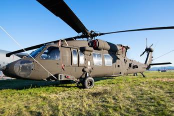 20732 - USA - Air Force Sikorsky UH-60L Black Hawk