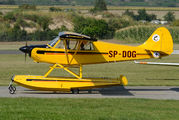 SP-DOG - Private Aviat A-1 Husky aircraft