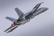 J-5010 - Switzerland - Air Force McDonnell Douglas F/A-18C Hornet aircraft