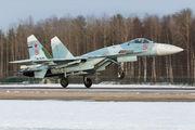 RF-95262 - Russia - Air Force Sukhoi Su-27P aircraft