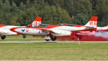 10 - Poland - Air Force: White & Red Iskras PZL TS-11 Iskra aircraft