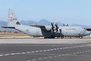 USA - Air Force 08-3179 image