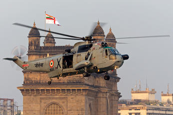 IN557 - India - Navy Westland Sea King Mk.43B