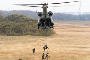 52906 - Japan - Ground Self Defense Force Kawasaki CH-47J Chinook