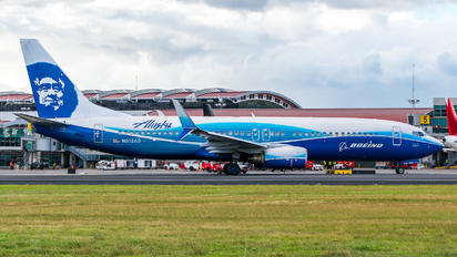 """""""Boeing Home"""" Livery"""