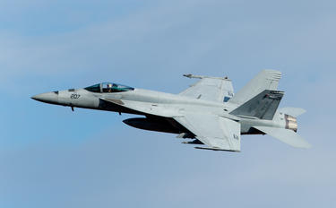 - - USA - Air Force McDonnell Douglas F/A-18E Super Hornet
