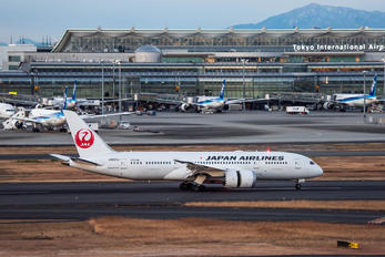 JA831J - JAL - Japan Airlines Boeing 787-8 Dreamliner