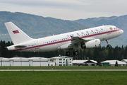 EK-RA01 - Armenia - Air Force Airbus A319 CJ aircraft