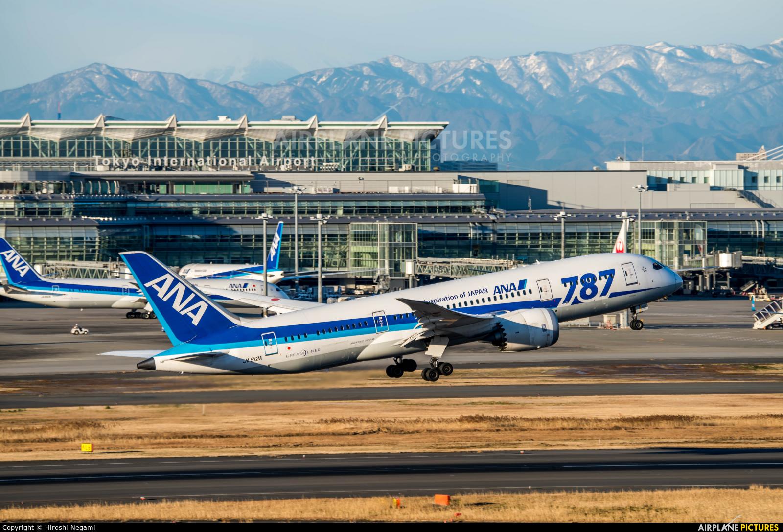 ANA - All Nippon Airways JA812A aircraft at Tokyo - Haneda Intl