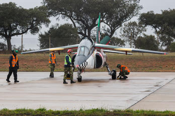 - - Portugal - Air Force - Airport Overview - Apron