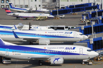JA8596 - ANA Wings Boeing 737-500