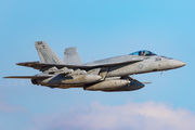 166863 - USA - Navy Boeing F/A-18E Super Hornet aircraft
